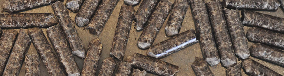 Caratteristiche pellet